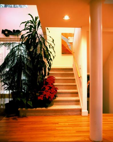 Bizios Residence stairs